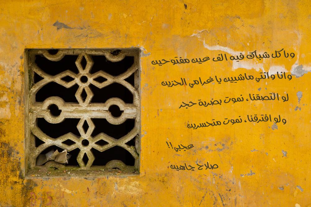 Salah Jahin, Egypt
