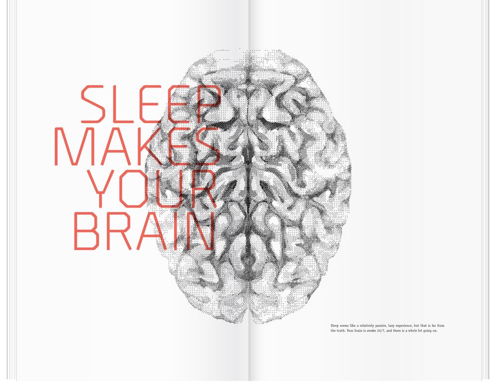 247_Brain.jpg