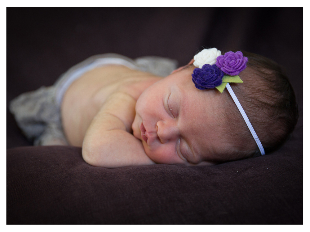 Violet (11 of 18).jpg