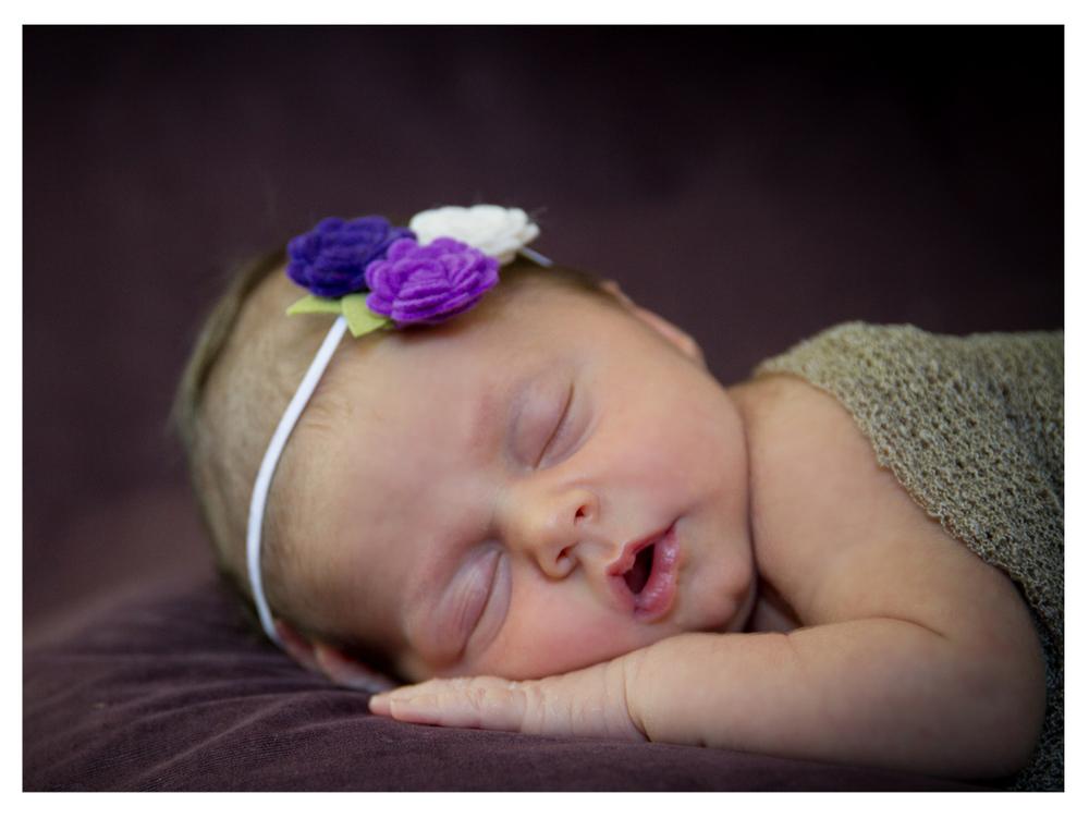 Violet (14 of 18).jpg