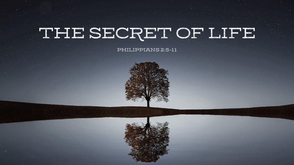 The Secret Of Life.jpg