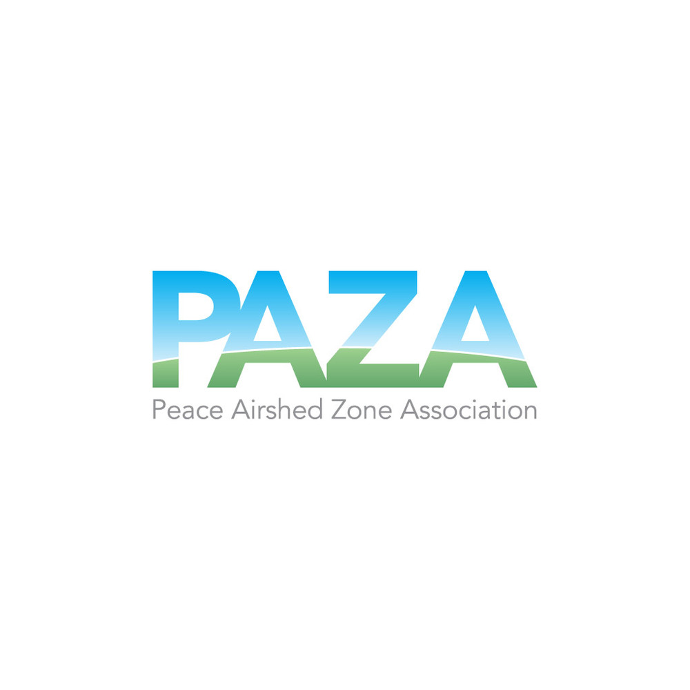 Identity Design and Logo: PAZA
