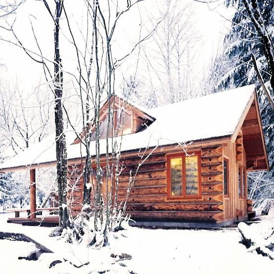 Neiman Guest Cabin