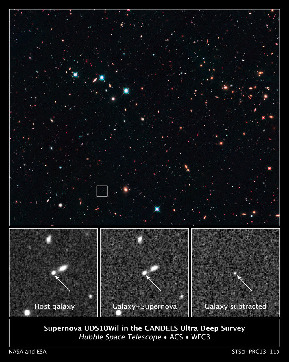 Supernova UDS10Wil in the CANDELS Ultra Deep Survey