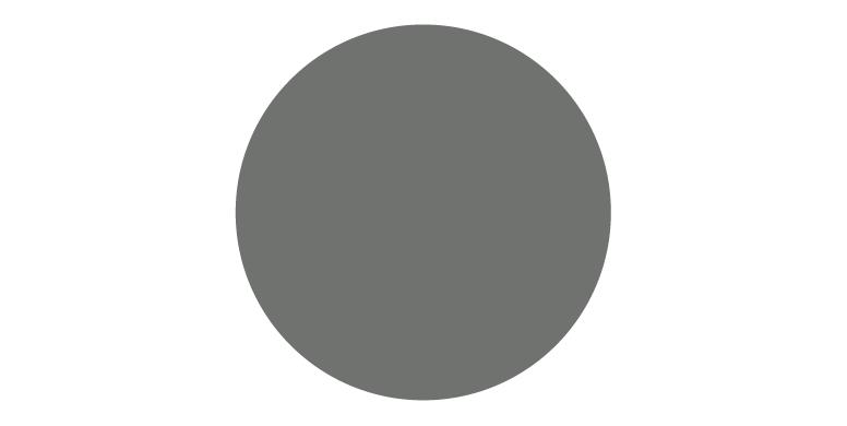 swatch-grey-Pantone424