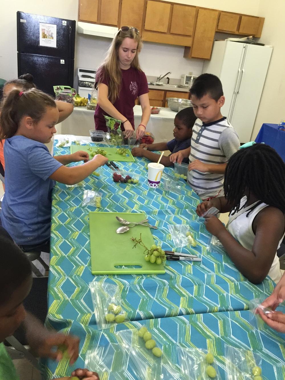 fruit workshop focus.JPG