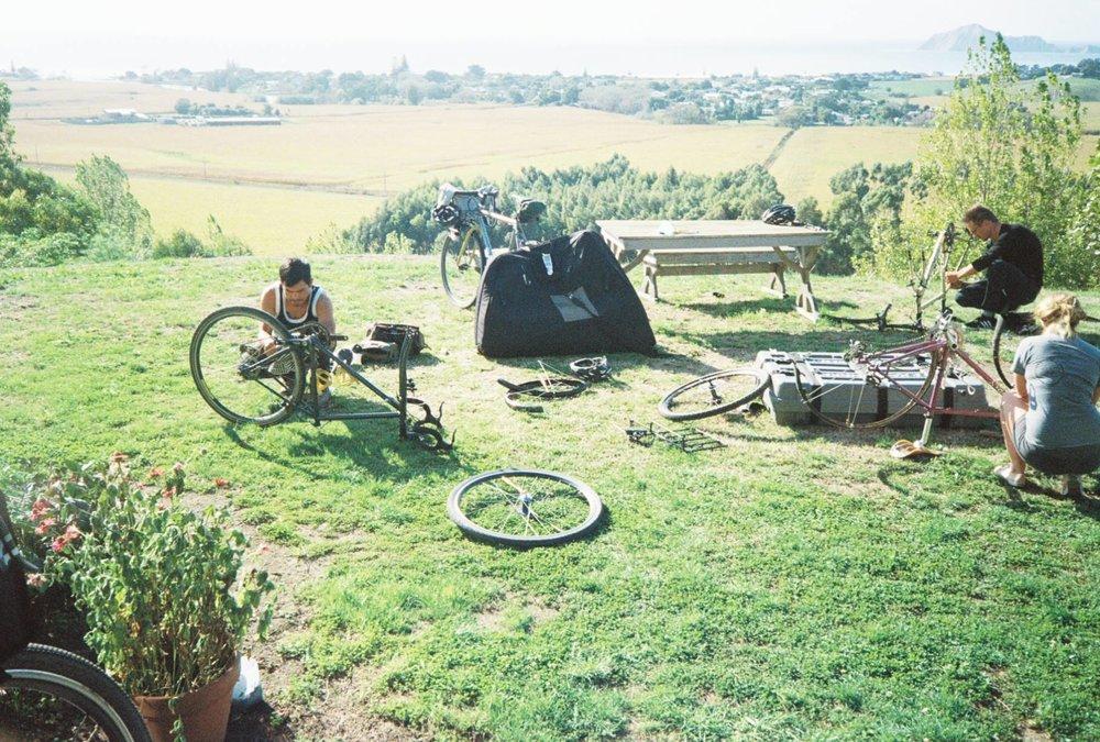 newzealandbikes.jpg