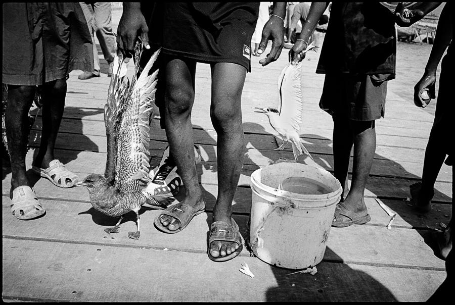 30_haiti08-07-23.jpg