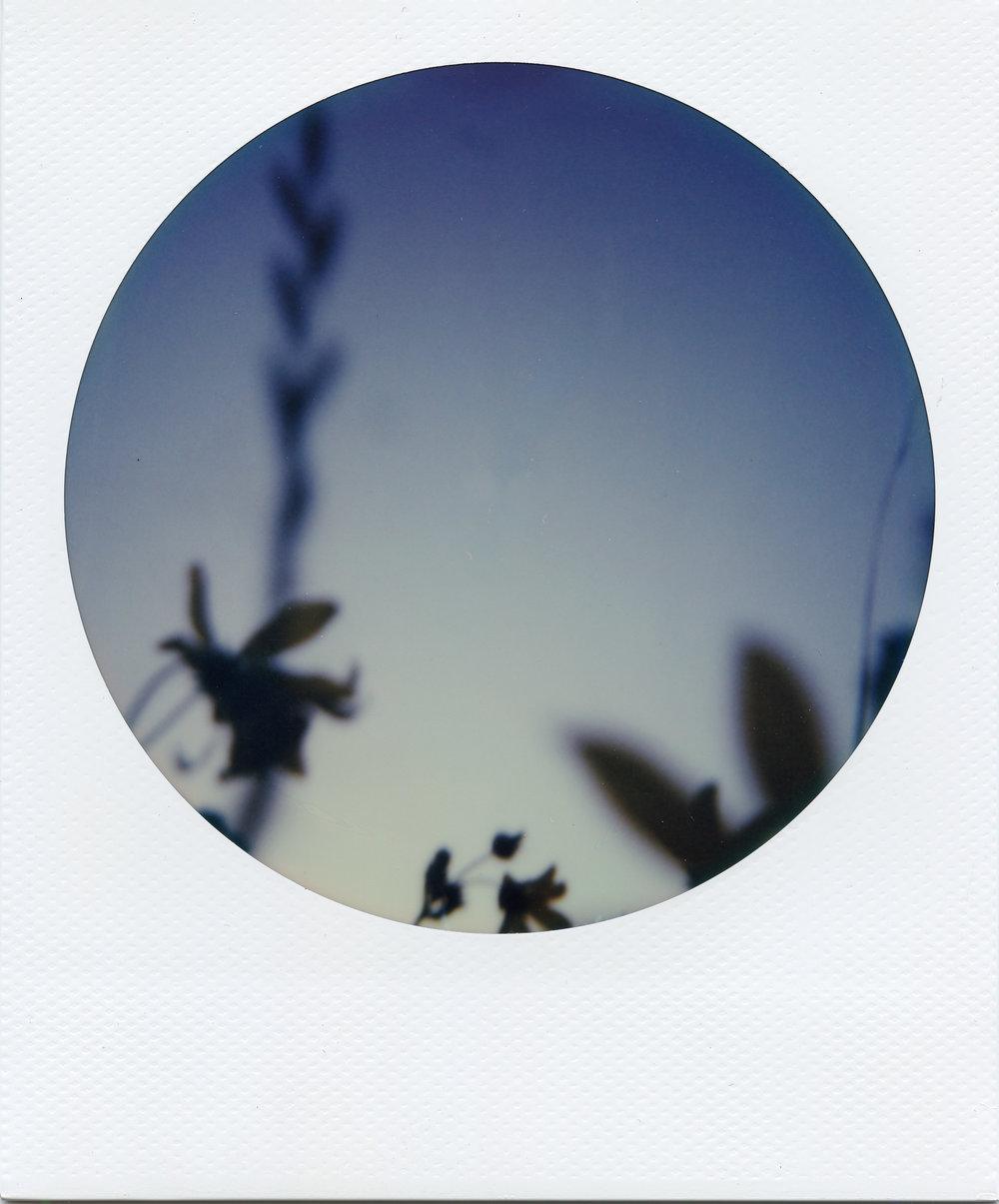 Polaroid ATX003-2.jpg