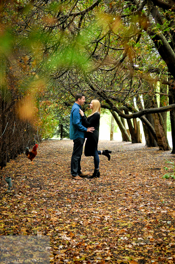 Proposal 10.14.17- NIC-OLE Photography-6.jpg