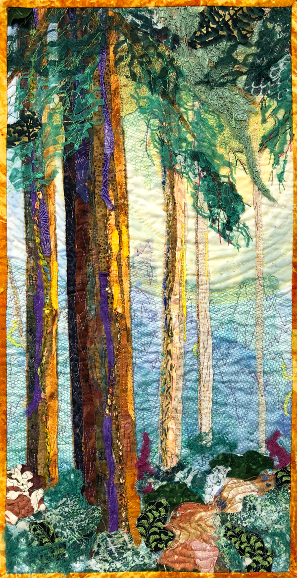 A Walk Through the Redwoods
