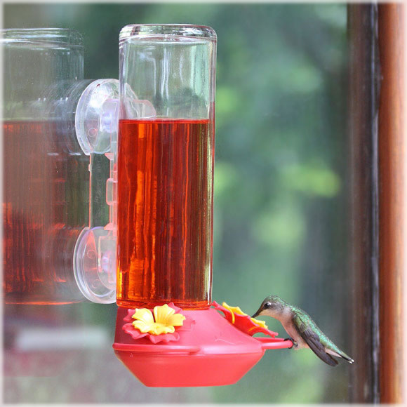 Window Mounted Hummingbird Feeder $16.49