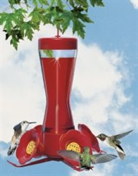 Perky Pet Glass Bottle Hummingbird Feeder