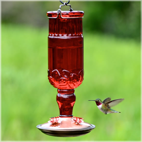 Red Antique Glass Bottle Hummingbird Feeder