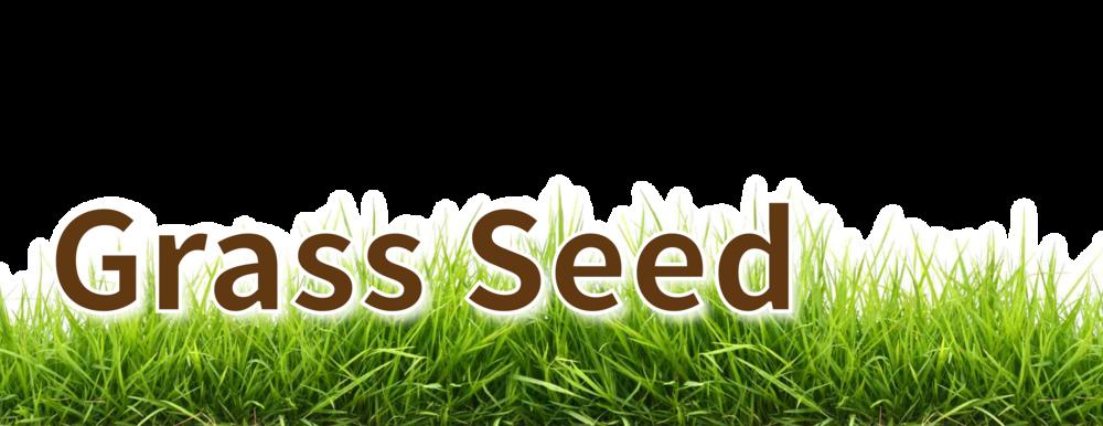 grass seed header-02.png