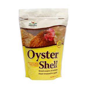 oyster shell.jpeg