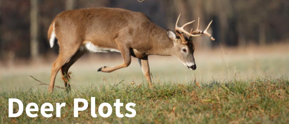 deer plots title-01.png