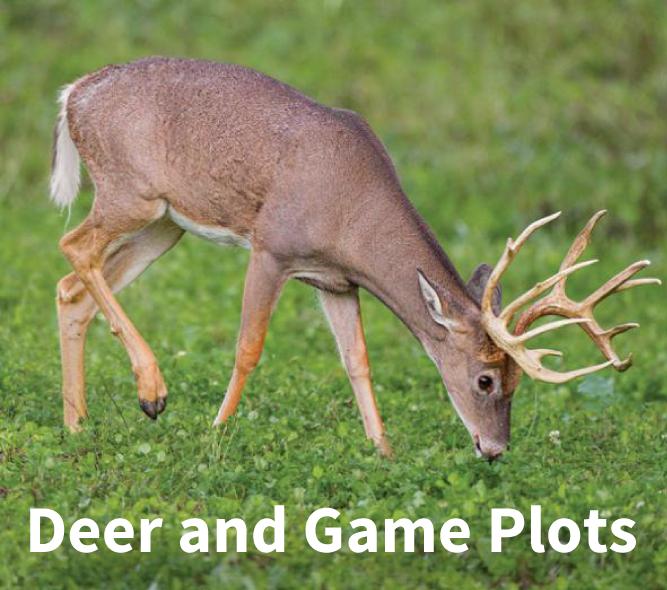 deer plot link-01.png