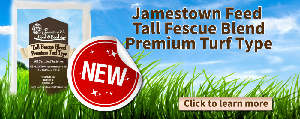 grass seed web banner no percents-01.png