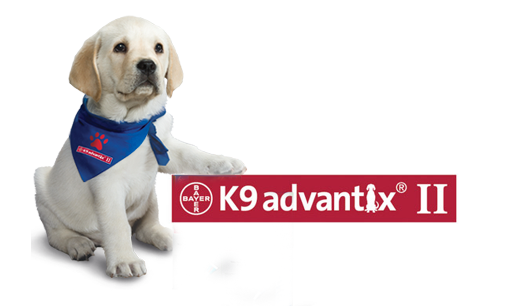 K9 Advantix � Jamestown Feed and Seed