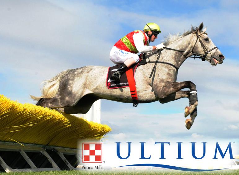 ultium banner-01.png