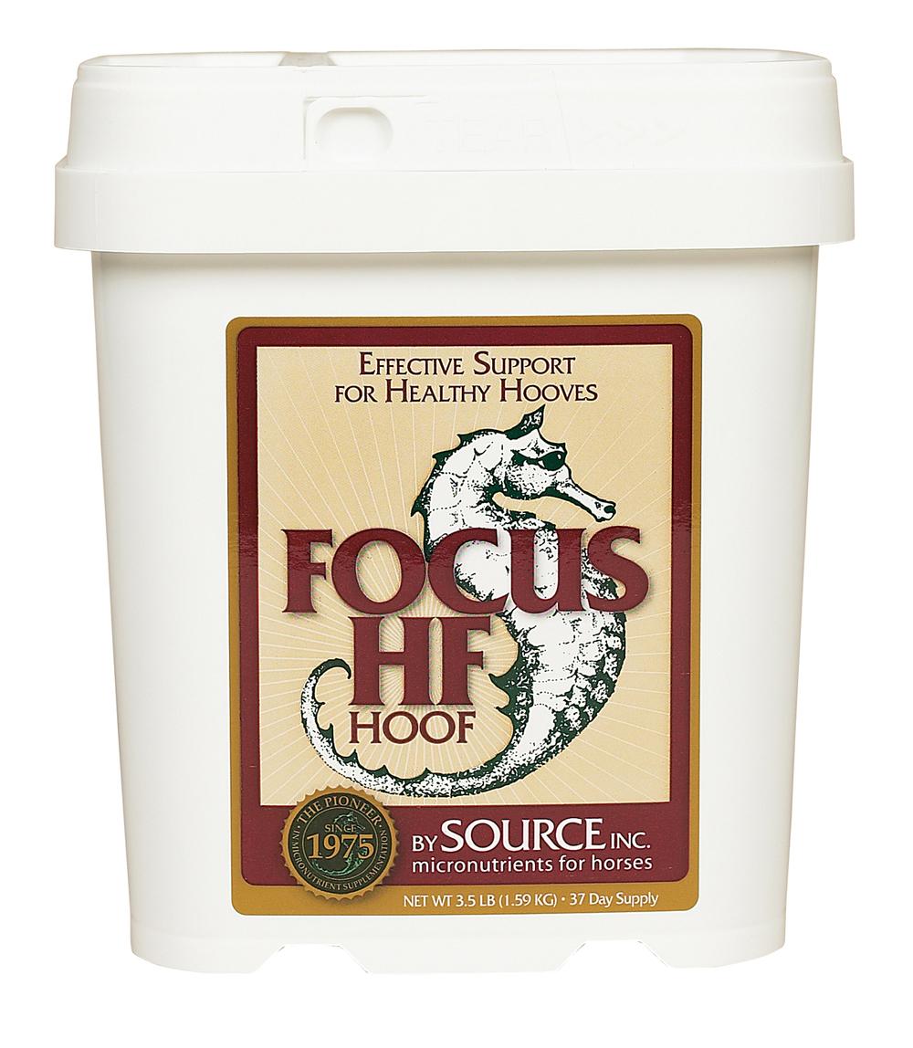 focus hf hoof.jpg