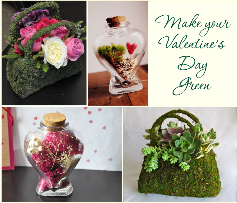 Make this a Green Valentine's Day with Jamestown Feed and Seed!  We have a great selection from moss covered purses and containers, moss wreaths, and multiple colors and varieties of moss and reindeer moss.  The pink heart bottle was made with our dusty rose colored reindeer moss and a bottle from the craft store.  The moss purses are available as well in two different sizes and make great flower arrangement bases.  Come in today and add some life to this romantic day with our Green Valentine's gifts!