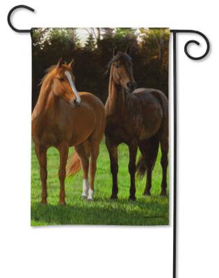 horse flag.jpg