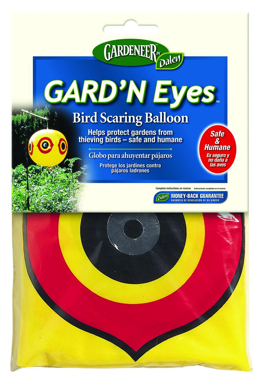 guardn eyes.jpg