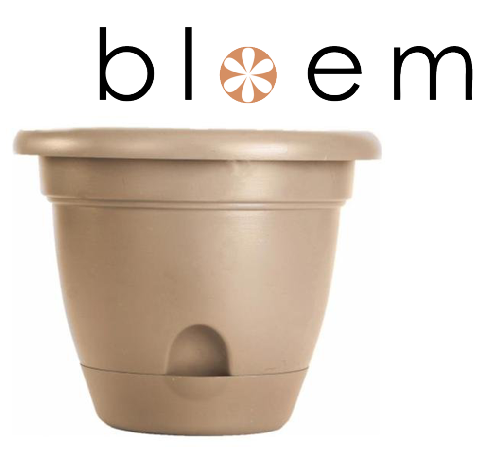 Bloem Lucca Self Watering Planter in Craft
