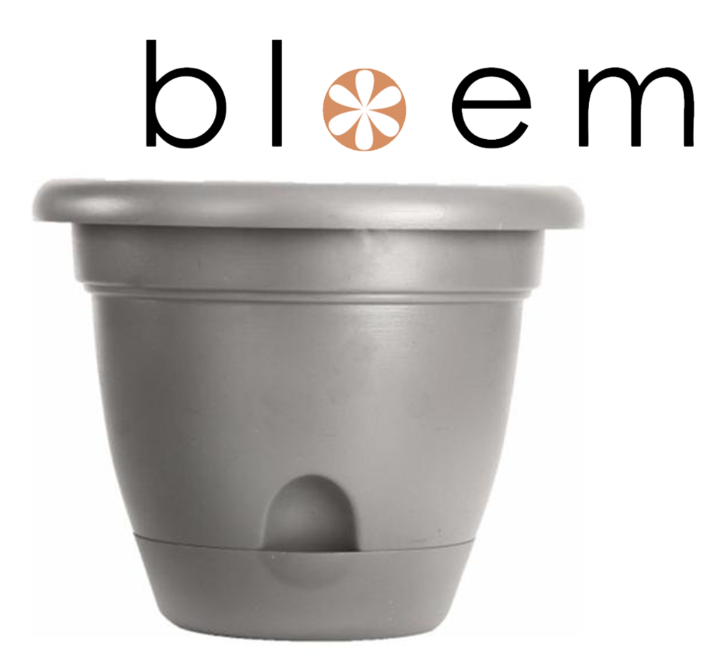 Bloem Lucca Self Watering Planter in Maximal