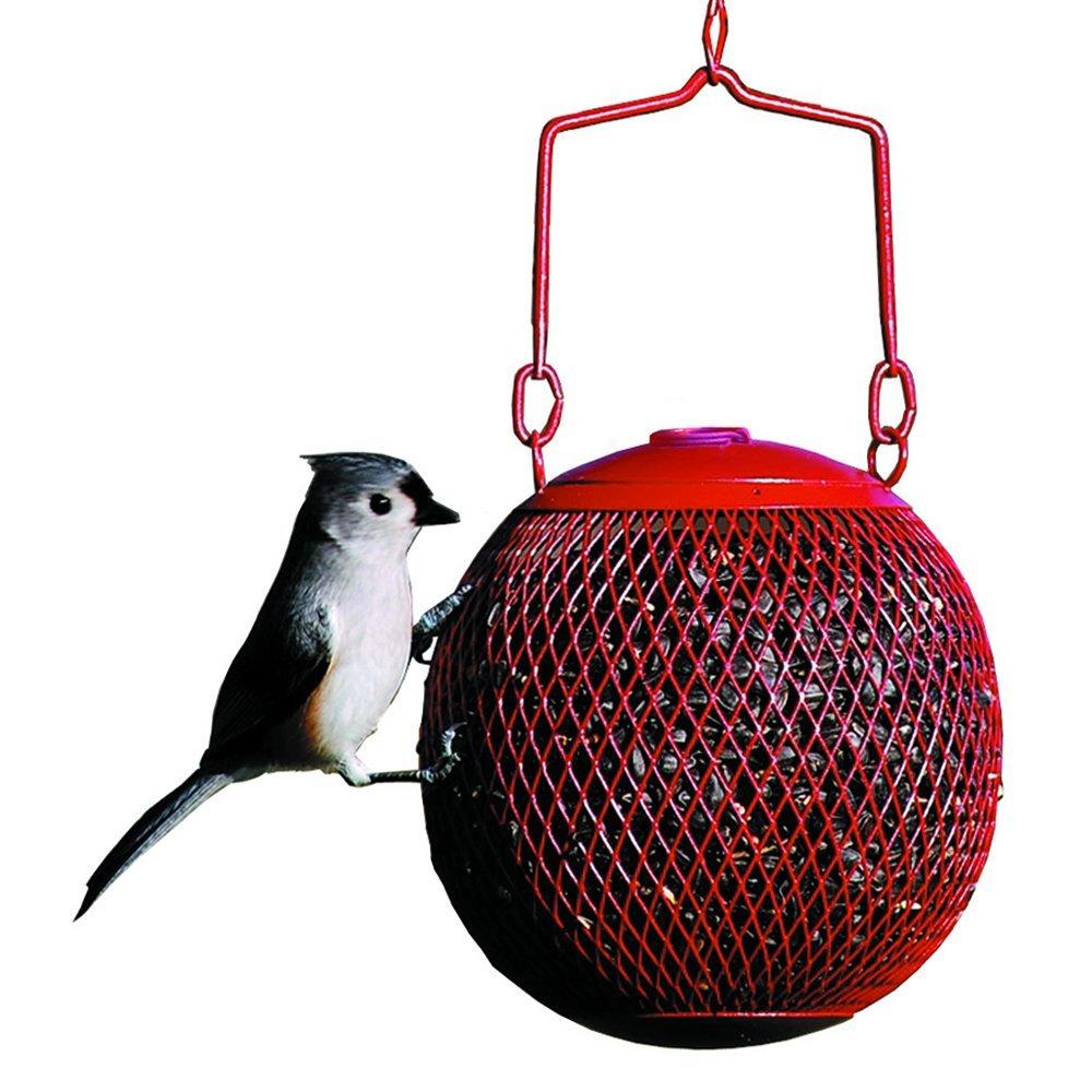 red apple feeder.jpg