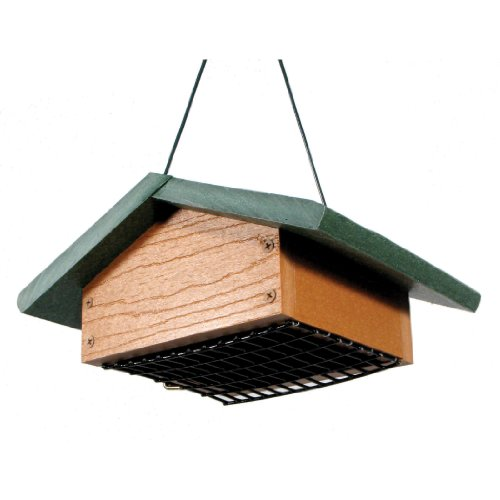AUDUBON GO GREEN SUET BOTTOM SUET FEEDER.jpg