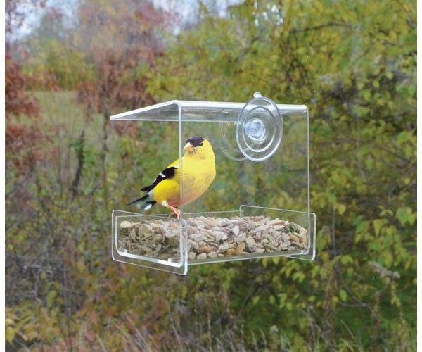 mini window feeder.JPG