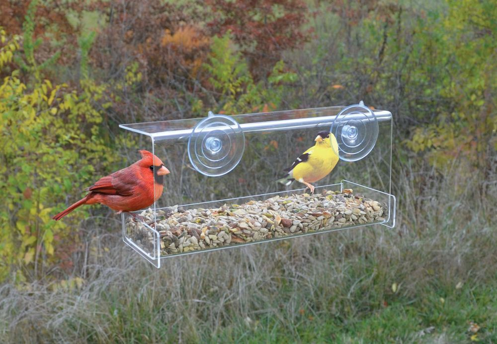 Clear_View_Deluxe_Open_Diner_Window_Bird_Feeder.jpg