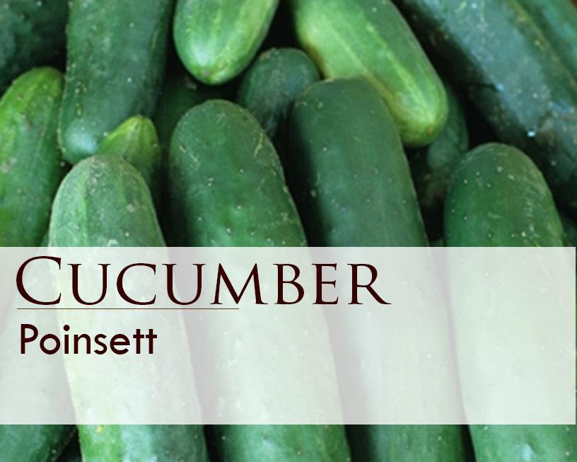 Seed web img_Poinsett Cucumber.jpg