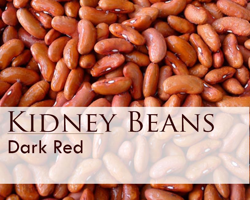 Seed web img_Kidney Beans.jpg