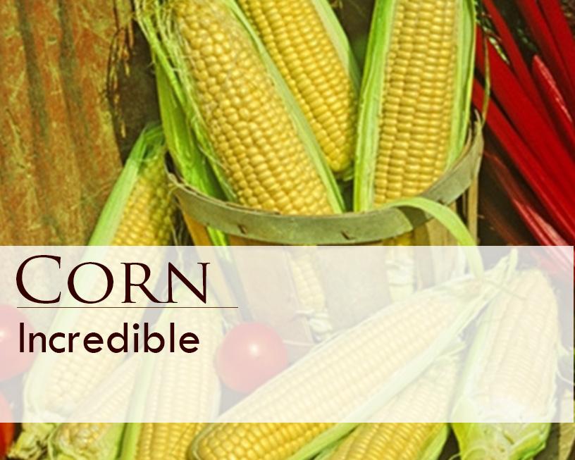 Seed web img_Corn_Incredible.jpg