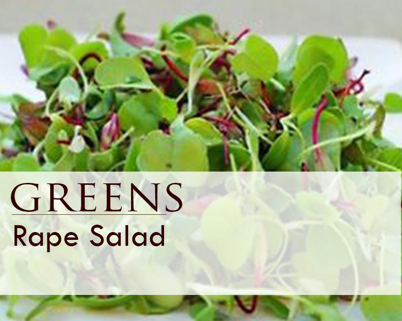 Seed web img_greens Rape Salad.jpg