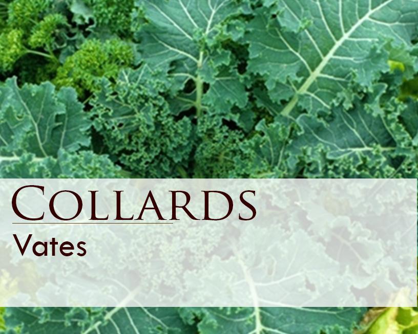 Seed web img_Vates Collards.jpg