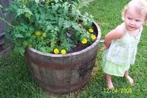 image courtesy of BackyardFarming.blogspot.com