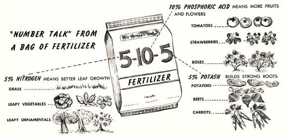 What Lawn Fertilizer Numbers Mean idea gallery