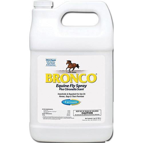 bronco+e.png