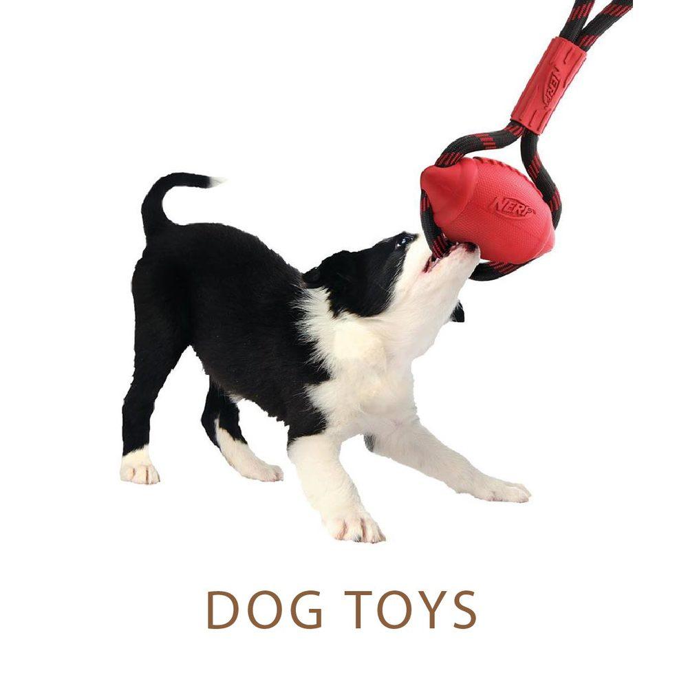 dog toys LNK-01.jpg