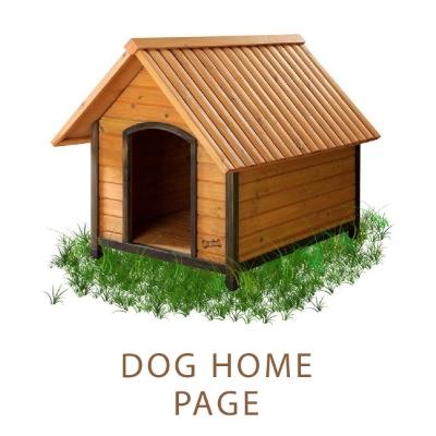 dog home-01.jpg
