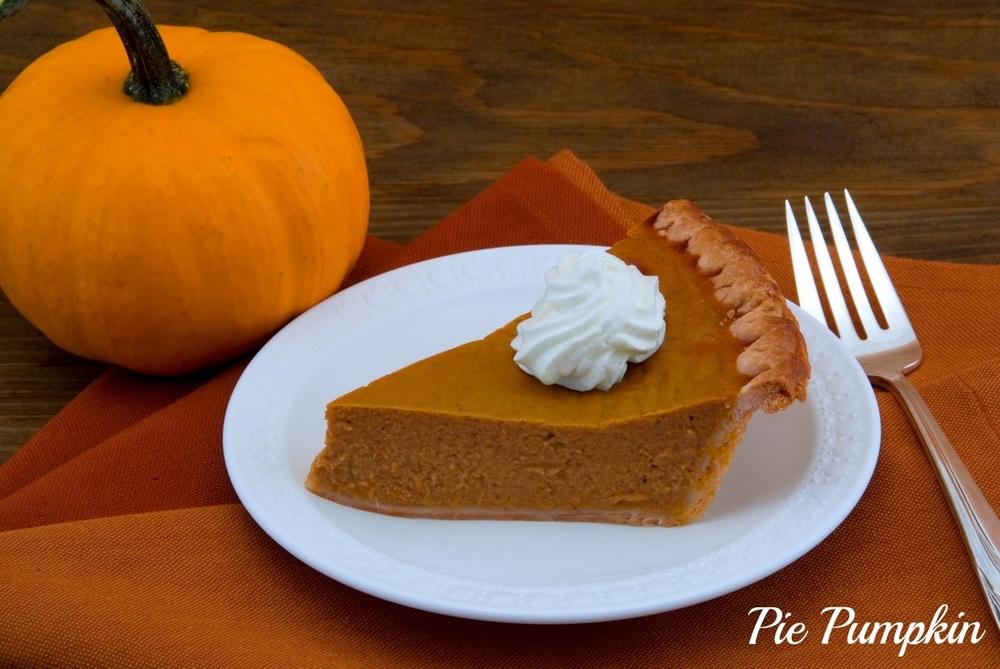 pie pumpkin.jpg