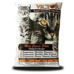 web_victor-cat.jpg