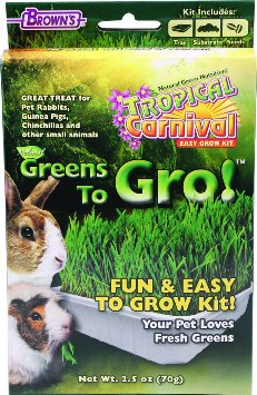 Tropical Carnival Greens to Grow
