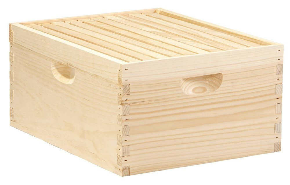 DEEPBOX10 10-Frame Complete Hive.jpg