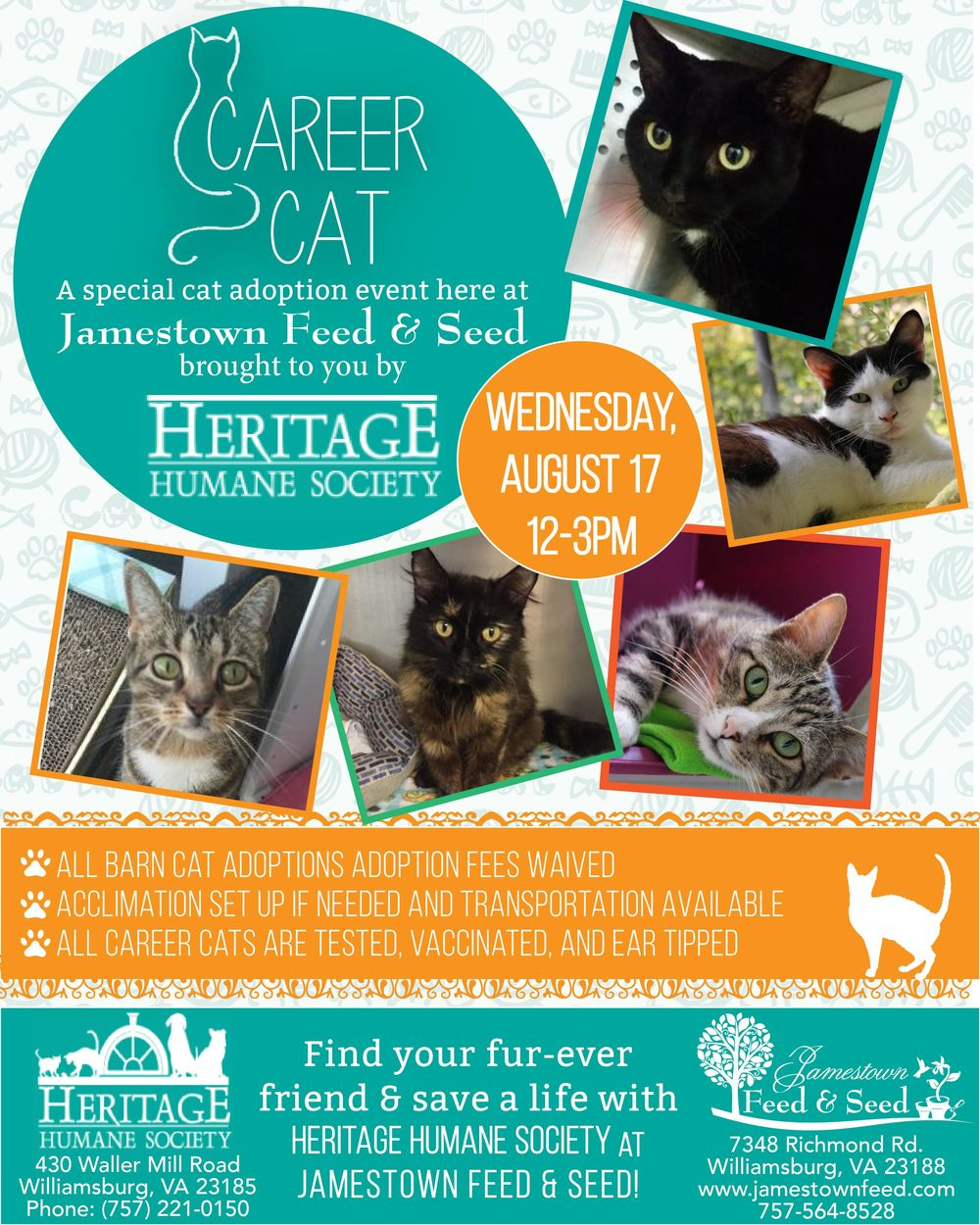 career cat flyer 01jpg